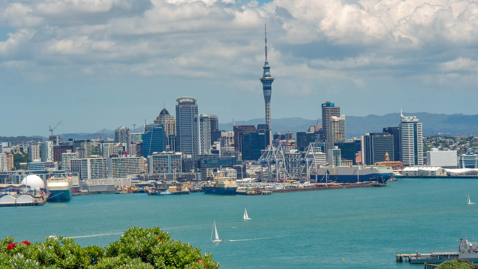 Visit Auckland on a Budget