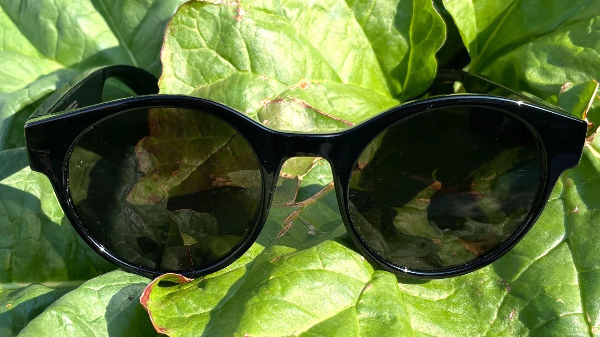 Razer Anzu Audio Sunglasses Reviews